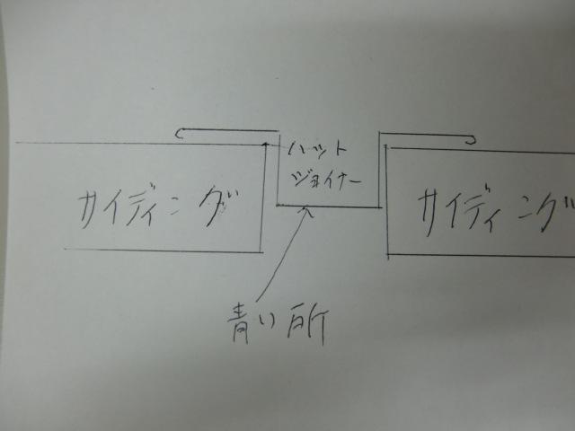 CIMG3394