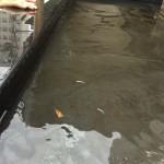 ベランダの下の部屋の雨漏りの原因を見つける方法